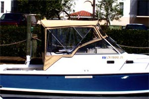 Bimini top and cockpit enclosure